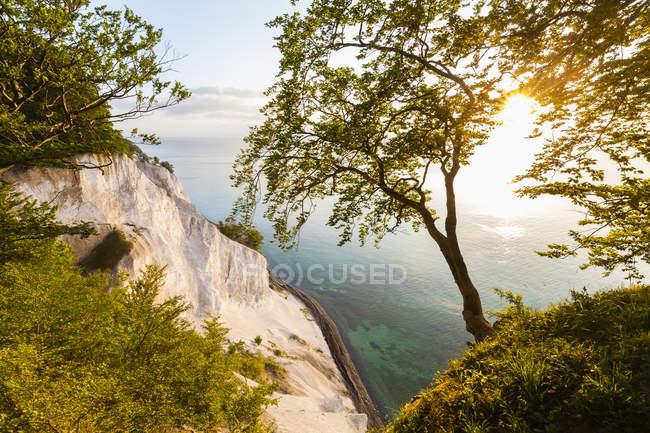 Scogliere di gesso, Isola di Lun — Foto stock