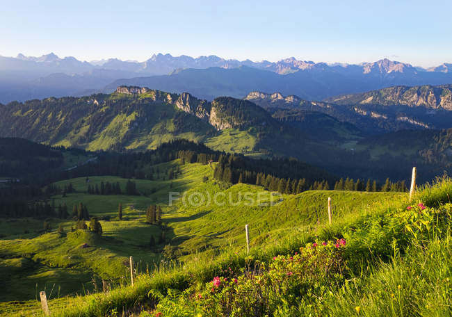 Grasgehren Pasture and Besler visto da di Riederberger Horn, Allgaeu, Bavaria, Germany — Foto stock
