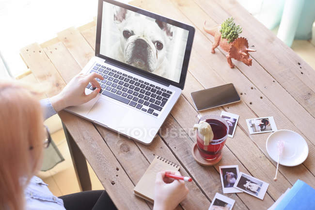 Woman looking at photo of dog on laptop — Stock Photo