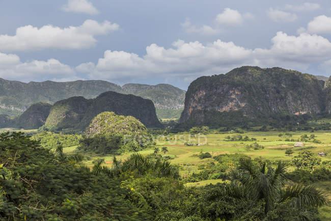 Vallée de Viñales, cuba — Photo de stock