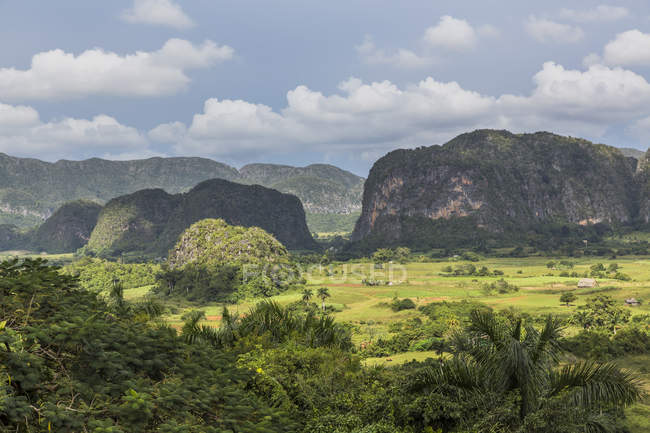 Vallée de Viñales, cuba — Photo de stock