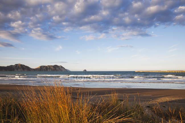 Tolaga Bay, beach in the evening — Stock Photo