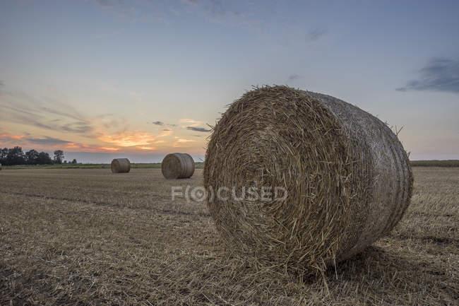 Fardos de palha no campo ao pôr do sol — Fotografia de Stock