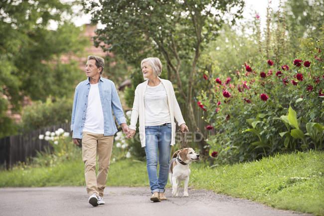 Couple sénior en promenade avec chien dans la nature — Photo de stock