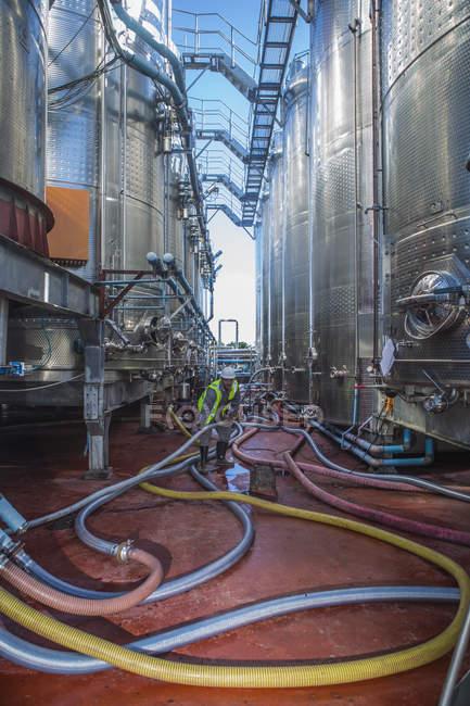 Зрілою людиною, контролюючи бродильних резервуарів — стокове фото