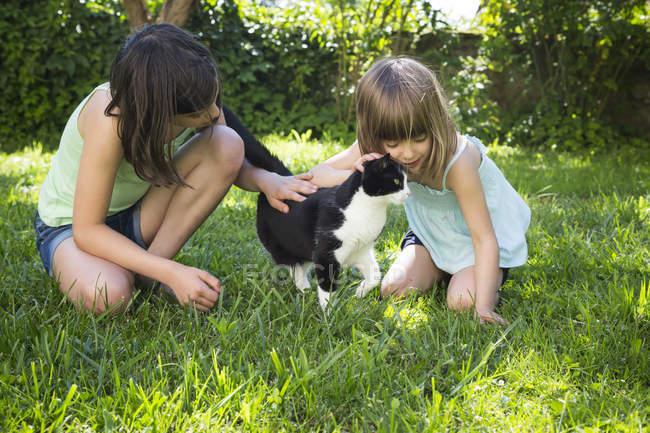 Deux filles caressant chat sur une prairie — Photo de stock