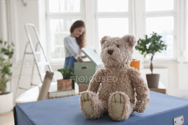 Teddy on cardboard boxes with woman in background — Stock Photo