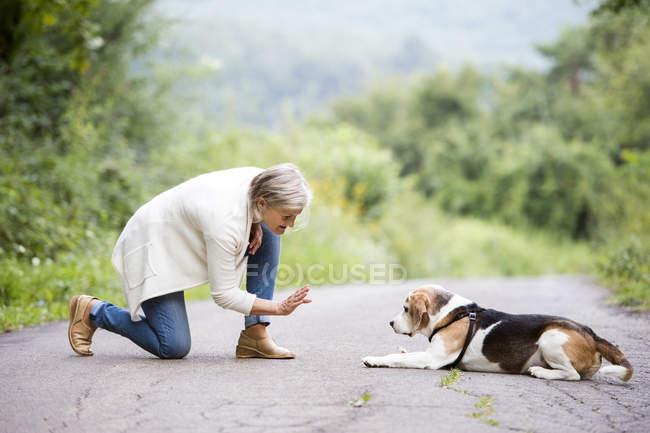 Senior woman teaching dog in nature — Stock Photo