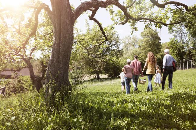Расширенная семейная прогулка с корзиной для пикника на лугу — стоковое фото