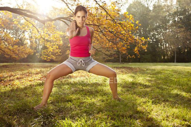 Жінка тримає tai chi створюють у Осінній Парк — стокове фото