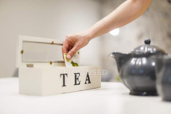 Gros plan de la main féminine tenant sachet de thé de la boîte à thé — Photo de stock
