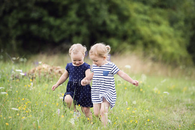 Two little sisters running hand in hand on a meadow — Stock Photo