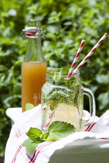 Домашний лимонад с различными травами — стоковое фото