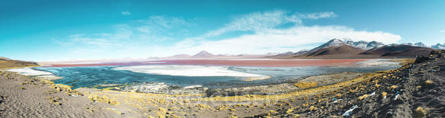 Bolivia, Eduardo Avaroa Andean Fauna National Reserve, Bolivia. Laguna Colorada — Stock Photo