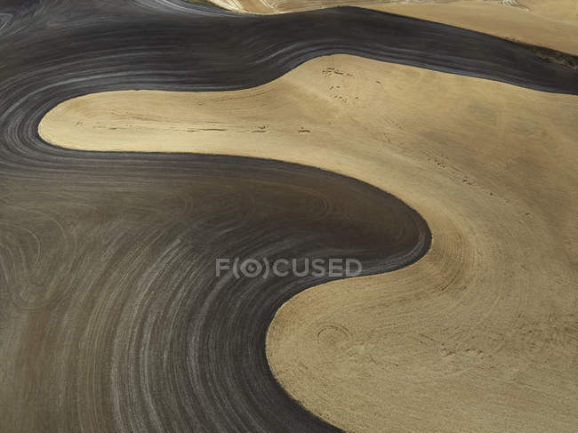 USA, Washington State, Palouse hills, wheat field during harvesttime — Stock Photo