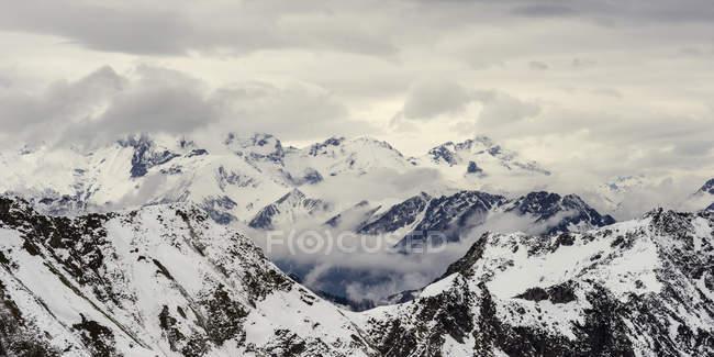 Hoefats in winter, Bavaria — стокове фото
