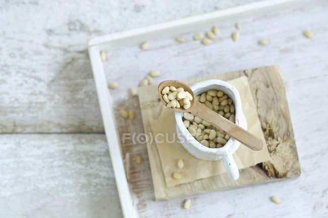 Кедрові горіхи в білому jar — стокове фото