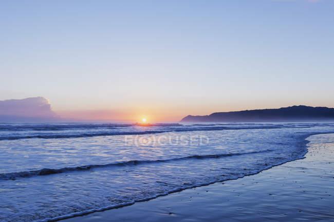 Te araroa bei Sonnenaufgang, Neuseeland — Stockfoto
