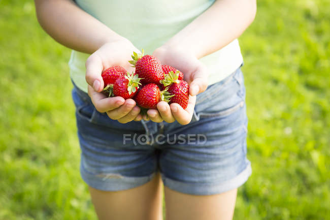 Mani femminili che tengono le fragole — Foto stock