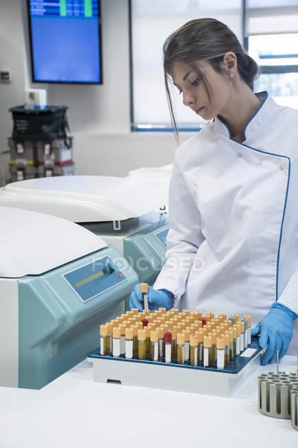 Technicien de laboratoire au laboratoire d'analyse avec plateau de tube à essai — Photo de stock