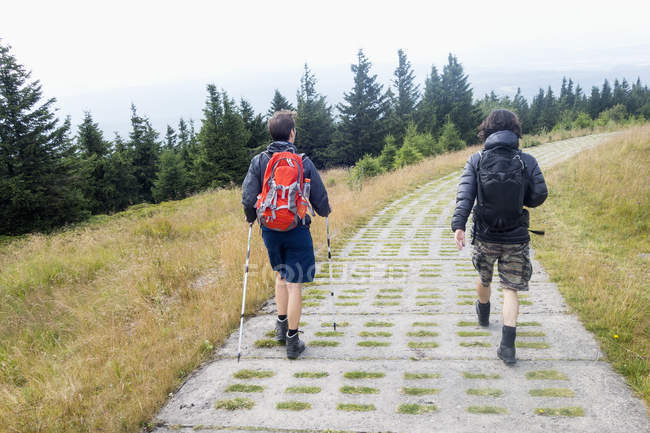 Germany, Harz, Brocken, back view of two friends hiking — Stock Photo