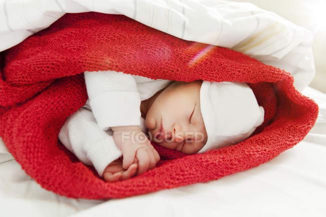 Новорожденного ребенка спать, завернутый в одеяло шерсти — стоковое фото