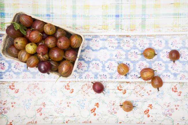 Cardboard box of red gooseberries — Stock Photo