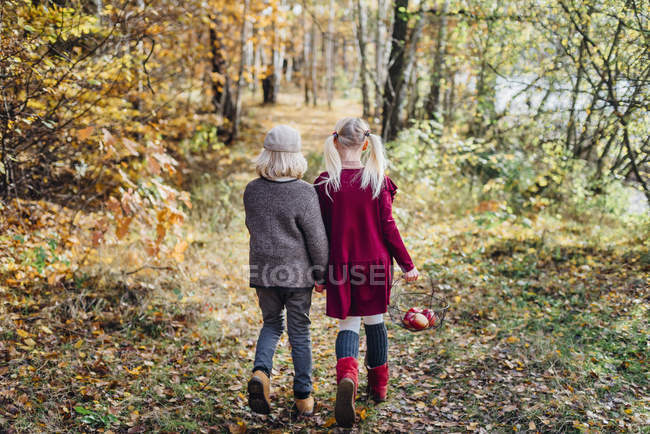 Hansel and Gretel, Boy and girl walking alone in the forest — Stock Photo