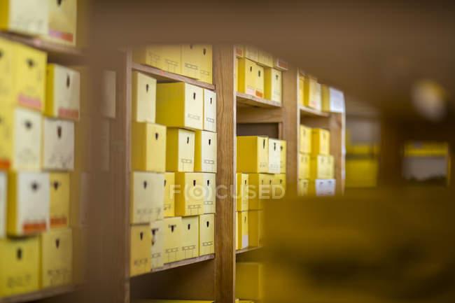 Склад с обувными коробками — стоковое фото