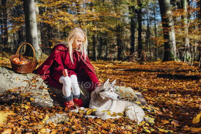 Red Riding Hood, Girl sitting on tree trunk in forest petting husky — Stock Photo