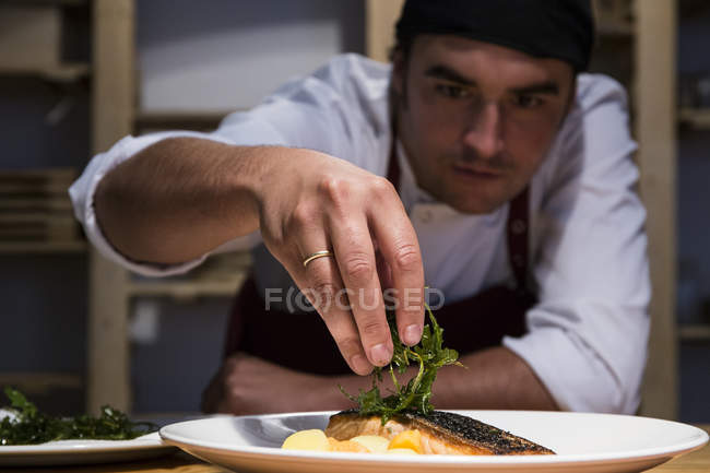 Chef decorating a slice of salmon with arugula — Stock Photo