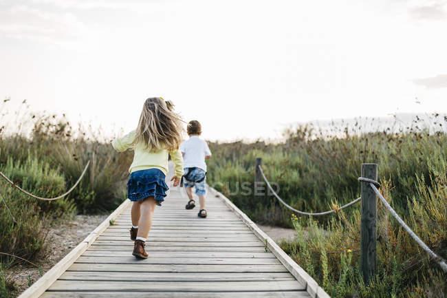 Вид сзади мило кавказской маленький брат и сестра, весело в длинной зеленой траве — стоковое фото