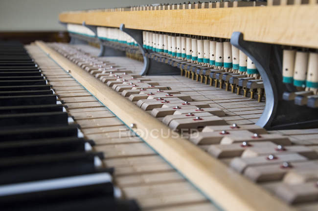 Mechanism of  a grand puano — Stock Photo
