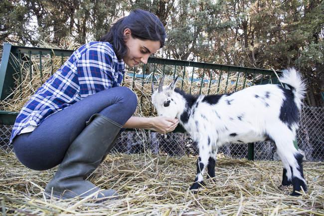 Donna che alimenta una piccola capra in una fattoria — Foto stock