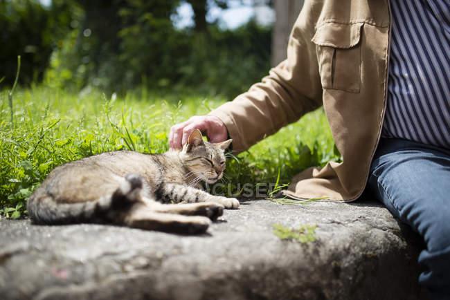 Mature man petting a cat — Stock Photo