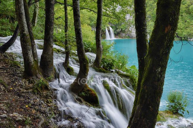 Хорватия, Водопад в национальном парке Плитвицкие озера с бирюзовой водой на заднем плане — стоковое фото