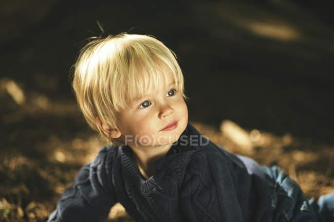Little boy in forest, closeup portrait in sunlight — Stock Photo