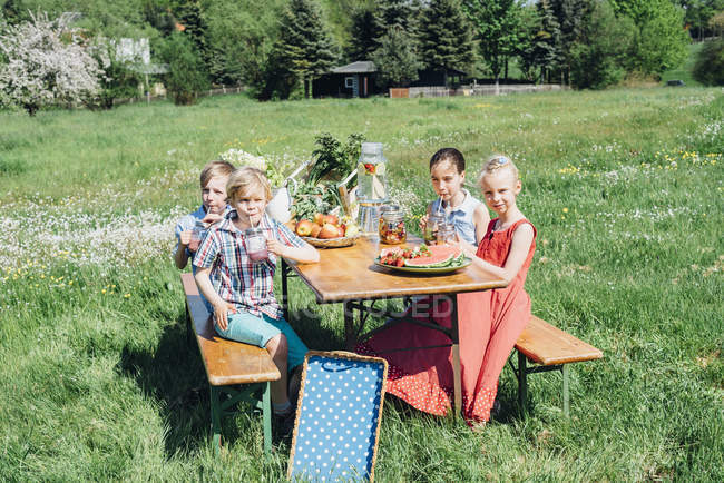 Children with fruit and drinks on meadow — Stock Photo