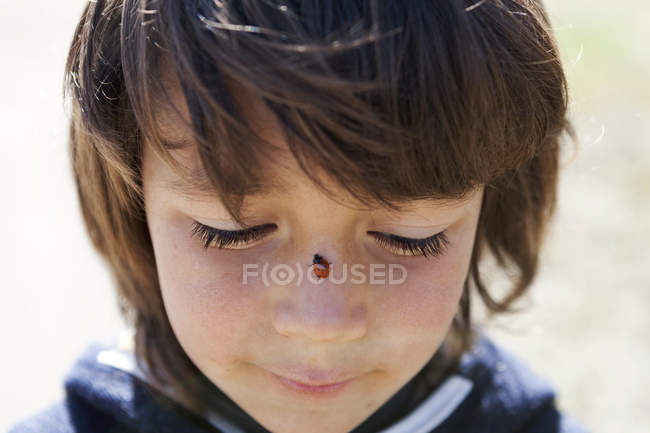 Portrait of little boy with ladybird on his nose — Stock Photo
