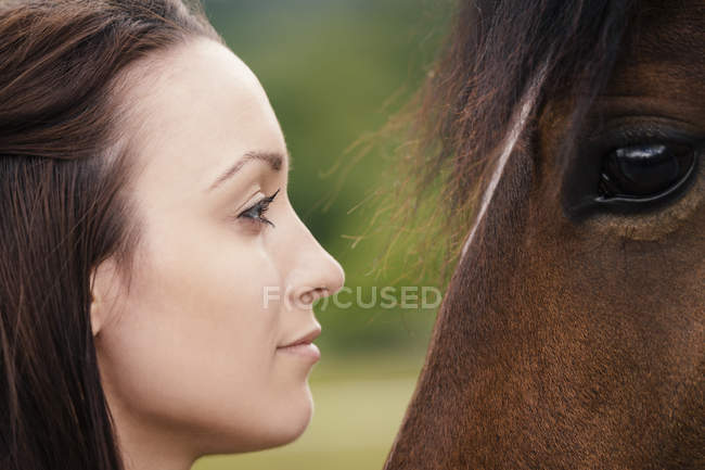 Young woman and brown horse face to face — Stock Photo