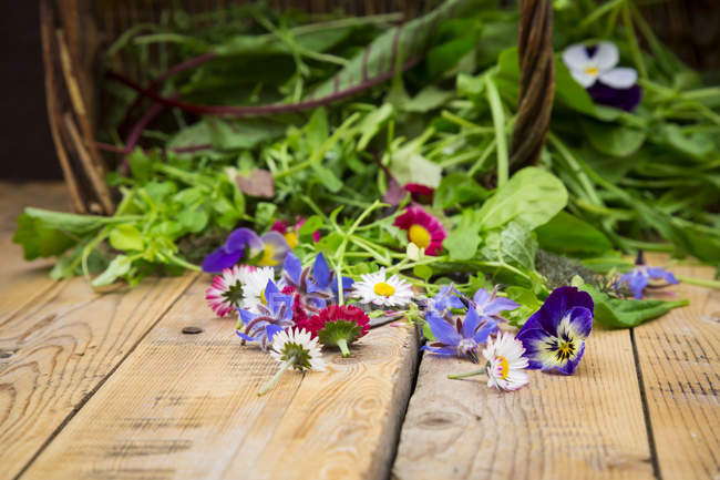 Fresh herbs and edible flowers — Stock Photo