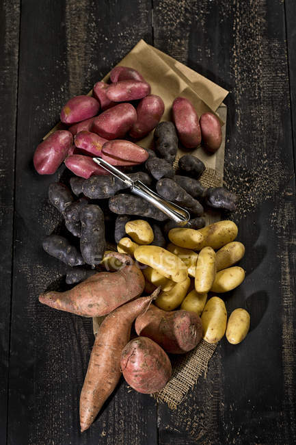 Different sorts of raw potatoes — Stock Photo