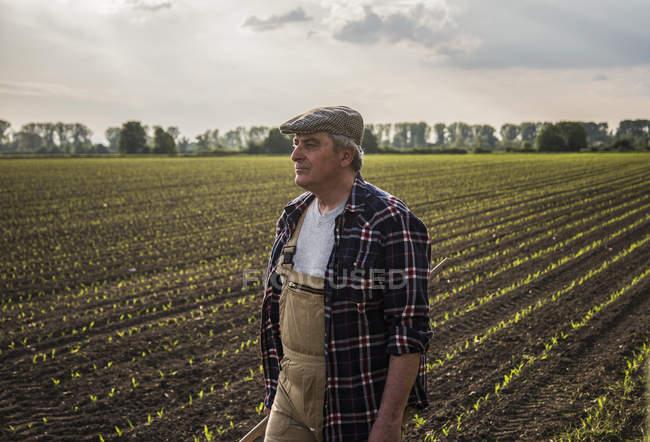 Agriculteur dans un champ dans la journée — Photo de stock