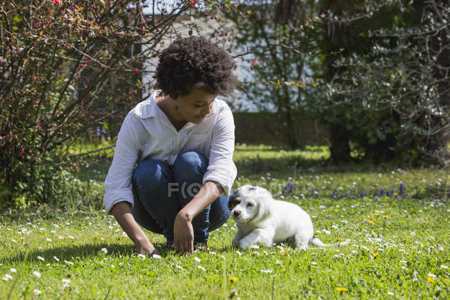 Woman playing with dog on meadow — Stock Photo