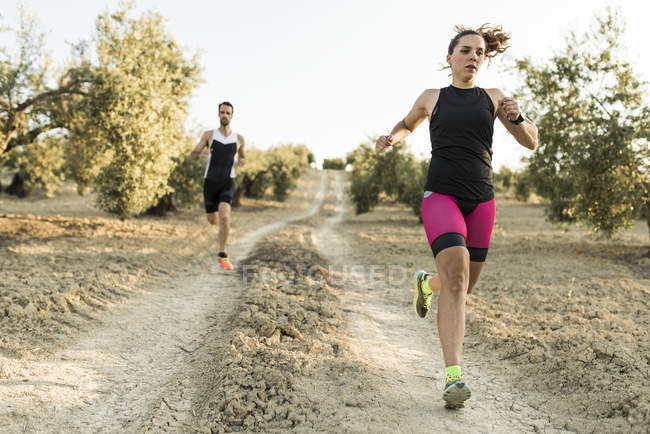 Two athletes running in olive orchard — Stock Photo