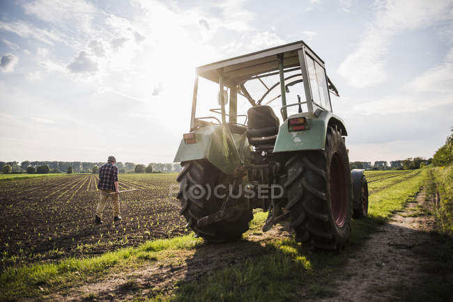Landwirt zu Fuß in ein Feld — Stockfoto