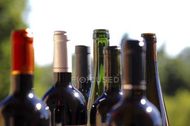 Закрыть из ряда различных винных бутылок — стоковое фото