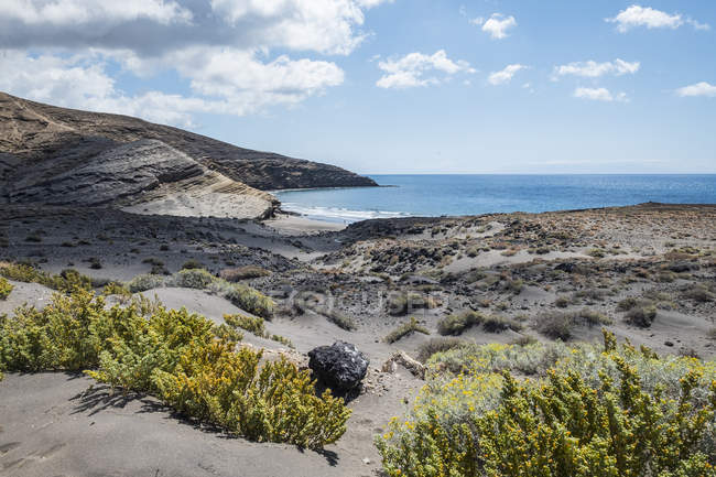 Spain, Tenerife, picturesque bay and plants — Stock Photo