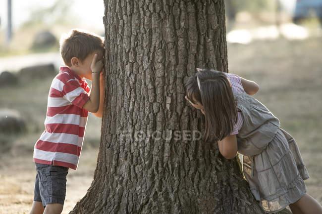 Menino e uma menina a brincar esconder e procuram na natureza — Fotografia de Stock