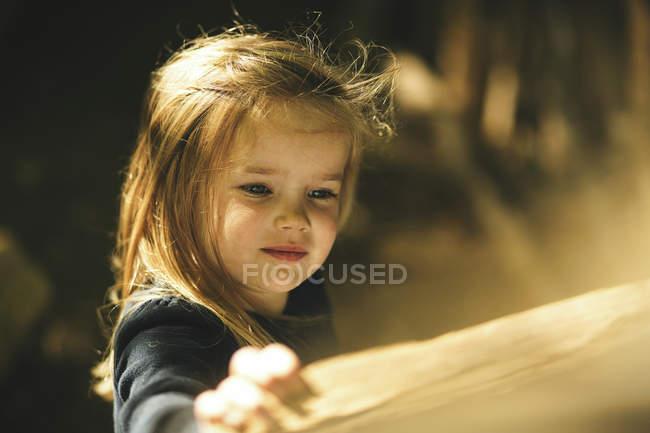 Ragazza nella foresta da intoppo di legno alla luce del sole — Foto stock